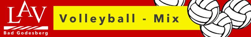 Qatarer wollen mit uns Volleyball spielen